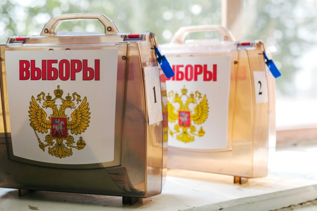 Предварительные результаты выборов губернатора: лидирует Светлана Орлова